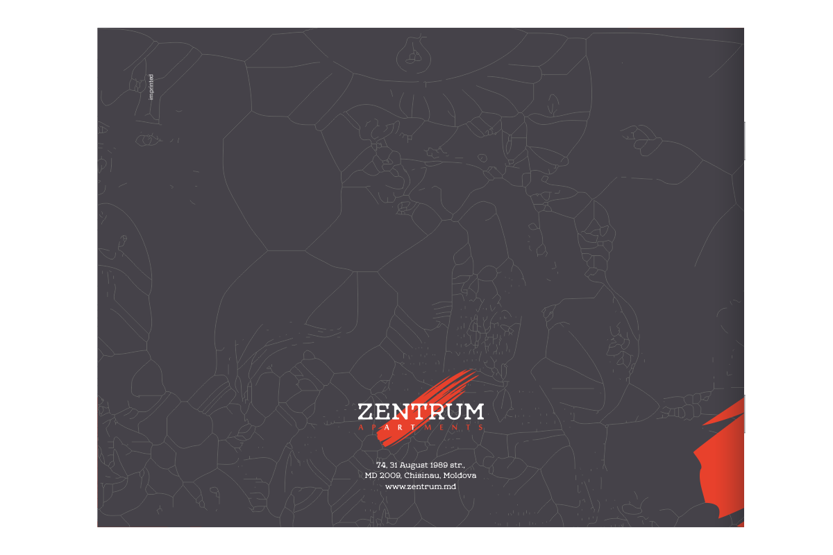 https://imprint.md/img/client/zentrum/brand_book/zentrum_brand_guidelines_coperta_2.png